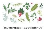 set of fresh green herbs and... | Shutterstock .eps vector #1999585409