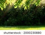 fresh air and beautiful natural ...   Shutterstock . vector #2000230880
