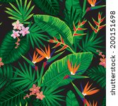africa,aloha,black,bloom,blossom,colorful,elements,exotic,fabric,floral,flower,garden,graphics,green,hawaii
