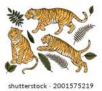 cartoon bengal tiger animal... | Shutterstock .eps vector #2001575219