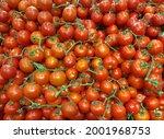 Red Ripe Cherry Tomato. Fresh...