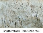 Small photo of The wood texture is florid, sunburnt, weathered