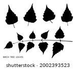 black silhouettes of birch...   Shutterstock .eps vector #2002393523