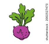 kohlrabi cabbage. vegetable... | Shutterstock .eps vector #2002527473