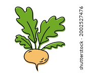 turnip. vegetable sketch. color ... | Shutterstock .eps vector #2002527476