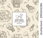 background with maitake  piece... | Shutterstock .eps vector #2002642286