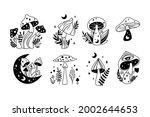 mystical boho mushrooms...   Shutterstock .eps vector #2002644653