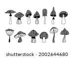 mystical boho mushrooms...   Shutterstock .eps vector #2002644680