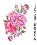 watercolor illustration ... | Shutterstock . vector #200275478
