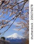 mt. fuji with sakura blossoms. | Shutterstock . vector #200276078
