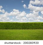 back yard  close up of hedge... | Shutterstock . vector #200283920