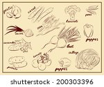 collection of hand drawn... | Shutterstock .eps vector #200303396