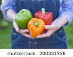 A Woman Carries Peppers In His...
