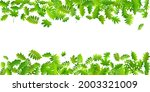 forest foliage beautiful vector ... | Shutterstock .eps vector #2003321009