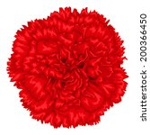 beautiful red carnation... | Shutterstock .eps vector #200366450