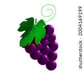 grapes ripe  branch whole fresh ... | Shutterstock .eps vector #2004169199