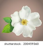 painted apple tree flower.... | Shutterstock .eps vector #200459360