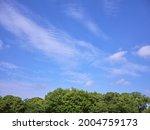 fresh green park and blue sky   Shutterstock . vector #2004759173
