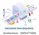 decoding dna sequence concept.... | Shutterstock .eps vector #2005277600