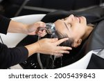 woman getting her hair washed... | Shutterstock . vector #2005439843