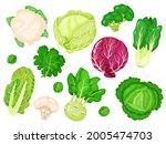 cartoon cabbages. fresh lettuce ... | Shutterstock .eps vector #2005474703