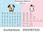 chromosome number in dog and... | Shutterstock .eps vector #2005587320