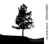 tree silhouette isolated on... | Shutterstock . vector #200644880