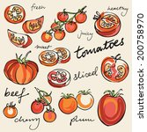 various tomatoes vector... | Shutterstock .eps vector #200758970