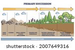 Primary Succession And...