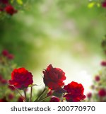 Stock photo beautiful red roses background 200770970