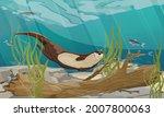 river otter swim in the river....   Shutterstock .eps vector #2007800063