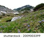 Alpine Landscape In Julian Alps ...
