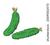 hand drawn vector fresh...   Shutterstock .eps vector #2009502473