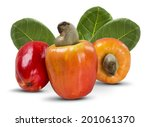 some cashews with leafs on a... | Shutterstock . vector #201061370