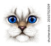 cat. creative design. color... | Shutterstock .eps vector #2010702509