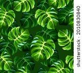 vector tropical seamless...   Shutterstock .eps vector #2010830840