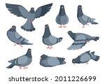 cartoon dove. funny pigeon... | Shutterstock .eps vector #2011226699