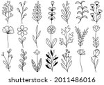 collection forest fern... | Shutterstock .eps vector #2011486016