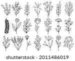 collection forest fern... | Shutterstock .eps vector #2011486019