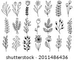 collection forest fern... | Shutterstock .eps vector #2011486436