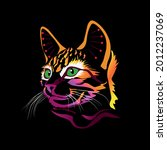 colorful unusual cat on a black ... | Shutterstock .eps vector #2012237069