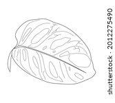 monstera adansonii leaf... | Shutterstock .eps vector #2012275490