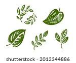 set of green leaves design... | Shutterstock .eps vector #2012344886