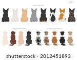 sitting dogs backside clipart ...   Shutterstock .eps vector #2012451893