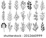 collection forest fern... | Shutterstock .eps vector #2012660999