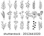 collection forest fern... | Shutterstock .eps vector #2012661020