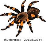 Spider Tarantula Predator...