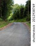 Country Asphalt Road Between...