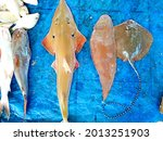 Fish sold in the market include protected fish such as the stingray (Rhynchobatus australiae). In English this fish is known as white spot wedgefish or guitarfish guitar