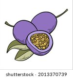 passion fruit in color hand... | Shutterstock .eps vector #2013370739